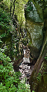 """The """"Bear's Head"""" (Medvedova glava) chock stone hangs wedged in verdant Zadlascica river canyon, in the Tolmin gorges (Tolminska korita), Triglav National Park, Julian Alps, Slovenia, Europe. Tolmin gorges (Tolminska korita) are among the longest and deepest gorges in Slovenia and are the lowest point (180 meters elevation) in Triglav National Park (TNP). Walk a trail to the confluence of two gorges (Tolminka and Zadlascica rivers), then along Zadlascica river canyon (locally called Skakalce, """"the jumps"""") up to a chock stone called the """"Bear's Head."""" Walk onwards to the scenic Devil's Bridge (Hudicev most, built 1907), which carries Tolmin-Cadrg road sixty meters above Tolminka River, then loop on foot back to the parking lot at the Triglavski narodni park (TNP) sign, near Zatolmin, Slovenia, Europe."""