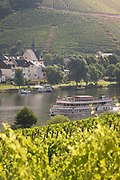 View of vineyards by river with tourboat, Germany