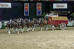 Budweiser heavy horses<br /> World Cup Final Jumping - Las Vegas 2000<br /> © Hippo Foto - Dirk Caremans