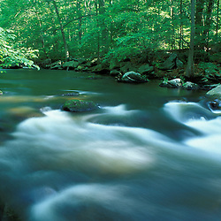 The Mianus River at the Treetops Estate.  Purchased by the TPL for the Greenwich Land Trust and the State of CT in 2001.  Greenwich, CT
