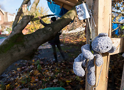 "© Licensed to London News Pictures; 02/11/2020; Bristol, UK. A teddy bear with a sign saying ""We Need Trees"" is seen pinned to a post as a campaigner for the Save The M32 Maples Campaign touches a cut down tree this morning after contractors working for a developer from 6am have cut down 2 of the 3 maple trees where the campaigners had built tree houses to protect the 3 remaining Norway Maple trees on Lower Ashley Road in the St Pauls area of Bristol close to the M32 motorway. Several people from the campaign are occupying the remaining tree and tree house. The campaign wanted the trees kept to enhance the environment and help remove pollution in what is a traffic congested area. The campaign asked the police Serious Fraud Unit to investigate allegations of a fraudulent Bristol City Council giveaway of £500,000 of public property, including the trees. Campaigners have obtained documents which show the mature trees fall outside the boundary of the land on Lower Ashley Road owned by John Garlick, and they claim the strip of land the three remaining protected trees are on belongs to Bristol City Council's highways department. Bristol City Council denies the claim and says the existing maps are inaccurate and that the trees are not on council owned land as it was all sold off by the council. Two of five trees originally there were felled on New Year's Eve, and campaigners chained themselves to remaining trees to prevent them being cut down. Photo credit: Simon Chapman/LNP."