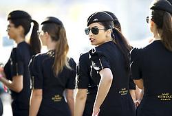 November 26, 2017 - Abu Dhabi, United Arab Emirates - Motorsports: FIA Formula One World Championship 2017, Grand Prix of Abu Dhabi, .. grid girls  (Credit Image: © Hoch Zwei via ZUMA Wire)