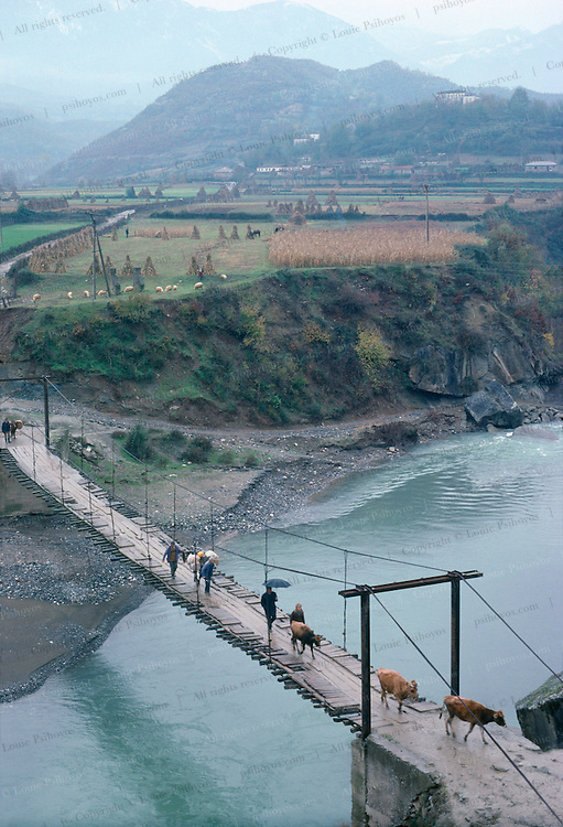 Farmers herd cattle across this wooden swing bridge over a river in Northern Albania.