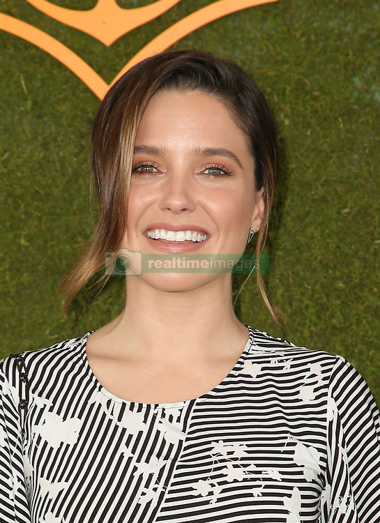 The 8h Annual Veuve Clicquot Polo Classic at Will Rogers State Historic Park in Pacific Palisades, California on October 14, 2017. 14 Oct 2017 Pictured: Sophia Bush. Photo credit: FS/MPI/Capital Pictures / MEGA TheMegaAgency.com +1 888 505 6342