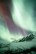 Alaska. Aurora Borealis. Northern Lights in the interior.