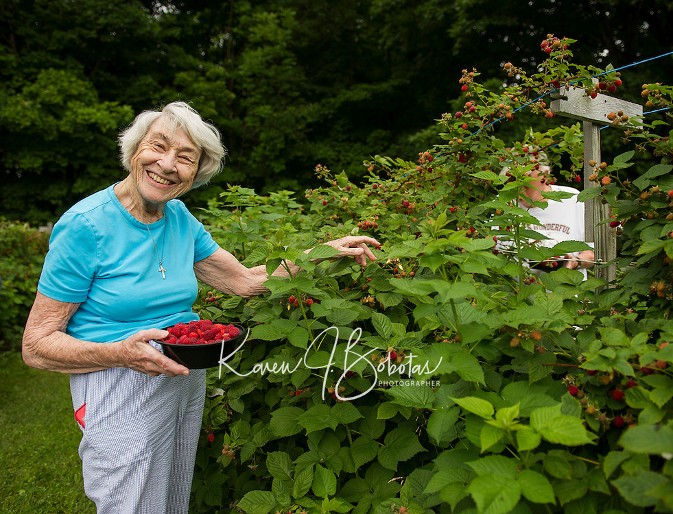 Anne Kynast visiting from Orlando, FL picks raspberries at Smith Farm Stand with Bill Bastraw on Thursday morning.  (Karen Bobotas/for the Laconia Daily Sun)