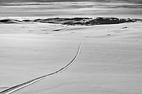 Lone skier in Rohkunborri nationalpark.