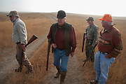 On a prarie trail with shotguns broken over their arms, hunters John Davidson and Byron Grubb, Timmy Stein and Joe Moores assess the prairie while upland game bird hunting near Minot, North Dakota, United States. These hunters work the land to find pheasant and grouse. These men have been shooting for most of their lives and put considerable efforts into their hunting, efforts which reward them with wild game meats, none of which is wasted.