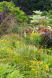 Hot borders in the brick garden at Glebe Cottage with Rudbeckia fulgida var. deamii AGM, Molinia caerulea 'Edith Dudszus', Cercidiphyllum, asters, cotinus, and dahlias