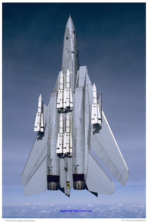 F-14B in vertical flight