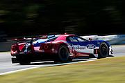 October 1, 2016: IMSA Petit Le Mans, #67 Ryan Briscoe, Richard Westbrook, Ford Chip Ganassi Racing, Ford GT GTLM
