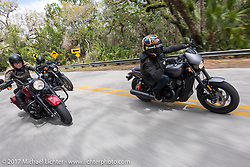 """Custom bike builder Jesse Rooke (R) riding a new 2017 Harley-Davidson 750 Street Rod alongside Iron Lilly Leticia Cline on the all new 2017 Harley-Davidson Road King Special with its 107"""" Milwaukee-Eight engine through Tomoka State Park during Daytona Beach Bike Week. FL. USA. Tuesday, March 14, 2017. Photography ©2017 Michael Lichter."""