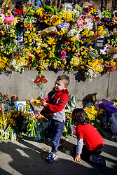 © Licensed to London News Pictures. 25/03/2017. London, UK. Children put flowers down to pay their respects to the victims of Westminster terror attack outside the Houses of Parliament in London on 25 March 2017. Photo credit: Tolga Akmen/LNP