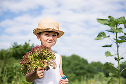 Small boy holding bunch of salat in Community Garden, Bavaria, Germany