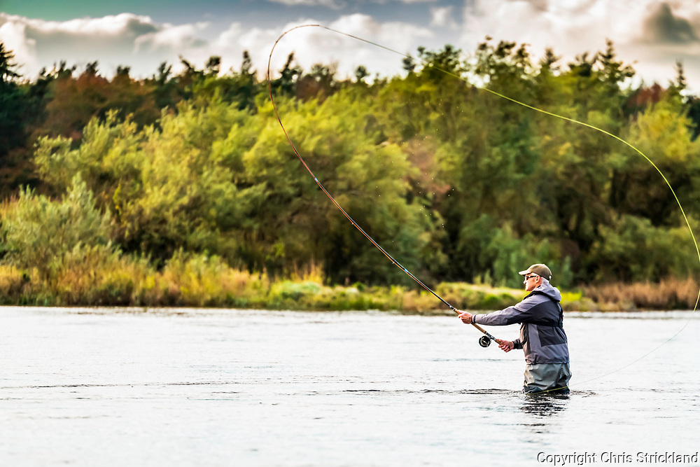 Coldstream, Scottish Borders, UK. 17th October 2018. Casting a fly for salmon on the River Tweed and Anglo Scottish Border at Coldstream's Lees beat.