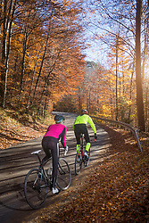 Couple riding roadbike on street in autumn, Bavaria, Germany