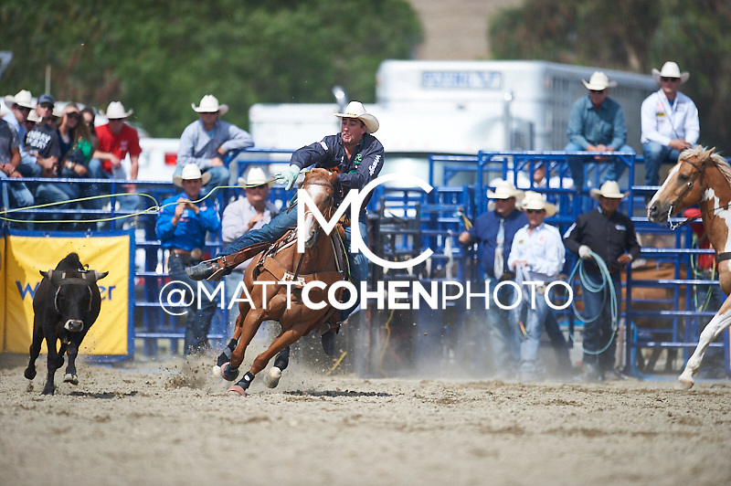 Team roper Joel Bach of Rhome, TX competes at the Rancho Mission Viejo Rodeo in San Juan Capistrano, CA.  <br /> <br /> <br /> UNEDITED LOW-RES PREVIEW<br /> <br /> <br /> File shown may be an unedited low resolution version used as a proof only. All prints are 100% guaranteed for quality. Sizes 8x10+ come with a version for personal social media. I am currently not selling downloads for commercial/brand use.
