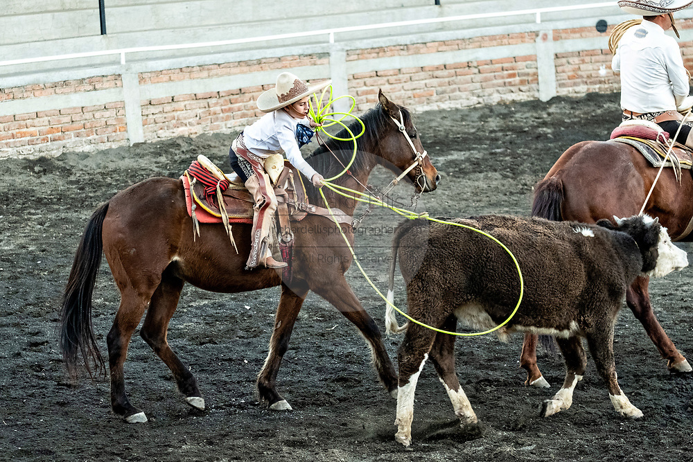 Luis Alfonso Franco ropes a steer during Terna en el Ruedo at the family Charreria practice session in the Jalisco Highlands town of Capilla de Guadalupe, Mexico. The Franco family has dominated Mexican rodeo for 40-years and has won three national championships, five second places and five third places.