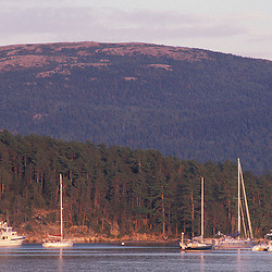 Somesville, ME.Sailboats in Somes Harbor with Sargent Mountain in the distance.  Acadia N.P.