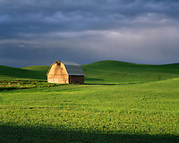 Barn in Palouse wheat field after spring storm Washington