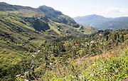Landscape view of forested valley and farmland, Ramboda, near Nuwara Eliya, Central Province, Sri Lanka, Asia
