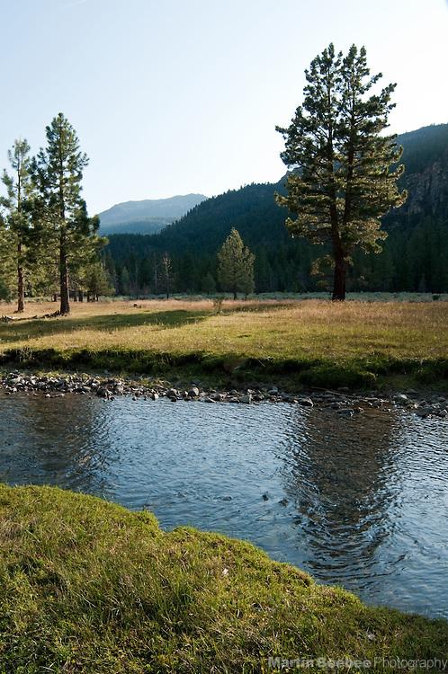 Wolf Creek flows through Wolf Creek Meadows in the Eastern Sierra Nevada, Toiyabe National Forest, California
