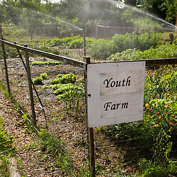 The Nuestras Raices community farm in Holyoke, Massachuestts.