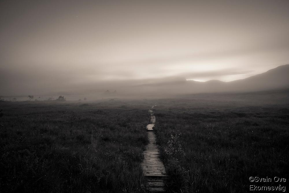 Trolsk stemning når tåken kommer sigende inn over myrlandskapet på Ørskogfjellet en mørk kveld.