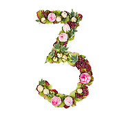 The number Three Part of a set of letters, Numbers and symbols of the Alphabet made with flowers, branches and leaves on white background