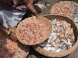 Fish and prawns being sold by the roadside, Mumbai