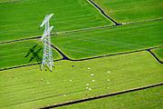 Nederland, Noord-Holland, Amsterdam-Noord, 20-04-2015; landelijk Noord, grazende koeien in het voorjaar onder hoogspanningsmast tussen Zunderdorp en Ransdorp. Onderdeel van het landelijk koppelnet van TenneT, het hoogspanningsnet dat landelijke elektriciteitscentrales verbindt.<br /> Powerless belonging to the nationwide high tension network. <br /> <br /> Polder and village north of Amsterdam.<br /> luchtfoto (toeslag op standard tarieven);<br /> aerial photo (additional fee required);<br /> copyright foto/photo Siebe Swart