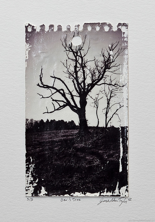 """Description:<br /> An old oak tree stands alone in a field, it's trunk has been marred and shows scars from decades of abuse. This is the infamous Devil's Tree in Bernards Township, Somerset County, NJ.  It's the subject of many New Jersey legends and strange stories according to some """"it's the portal to Hell.""""  <br /> Due to the photo transfer technique each image in the edition has differences in the way the ink has stuck to the page making each print unique.<br /> <br /> Awards:<br /> First Place, 2012 Smithville Juried Photography show <br /> <br /> Medium:<br /> Acrylic Gel Transfer on gessoed reporters pad page mounted on watercolor paper with a dab of archival quality PVA.<br /> Size: print 3.5"""" x 5.5"""" mounted on 9""""x11"""" Archival watercolor paper<br /> <br /> Edition size:<br /> 5"""