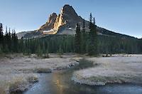 Liberty Bell Mountain at sunrise from meadows of Washington Pass, North Cascades Washington