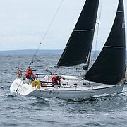 NM shorthaned 2021 Hankø