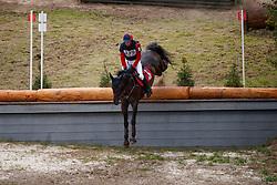 De Cleene Wouter, BEL, Alaric de Lauzelle<br /> European Championship Eventing Landelijke Ruiters - Tongeren 2017<br /> © Hippo Foto - Dirk Caremans<br /> 29/07/2017