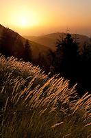 Panorama view at sunrise, Basilicata/Calabria, Pollino National Park, Italy. November 2008. Mission: Pollino National Park; HDR