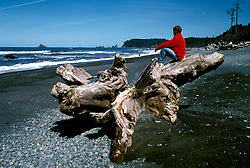 WA: Washington State; Olympic National Park, Rialto Beach    .Photo Copyright: Lee Foster, lee@fostertravel.com, www.fostertravel.com, (510) 549-2202.Image: waolym204