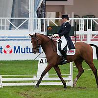 7YO Dressage - Mondial du Lion 2012
