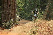 Forest Gardens BMX