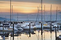 Yachts in the Squalicum Marina, Bellingham Bay Washington