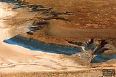 Outback South Australia