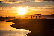 Men hike the beach at sunset to visit a research outpost in Calypsobyen, Svalbard. Arctic terns (Sterna paradisaea) fly overhead.