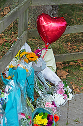 © Licensed to London News Pictures 23/09/2021. Kidbrooke, UK, Flowers and a ballon. A large police cordon is still in place around Cator Park at Kidbrooke Village in Kidbrooke, South East London today after the body of 28 year old school teacher Sabina Nessa was found near a community centre. Police have said Sabina left her home and walked through Cator Park heading for the Depot pub at Pegler Square in Kidbrooke Village to meet a friend. Photo credit:Grant Falvey/LNP
