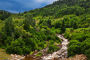 River in the Laurentian Mountains<br /> , Parc national des Laurentides, Quebec, Canada