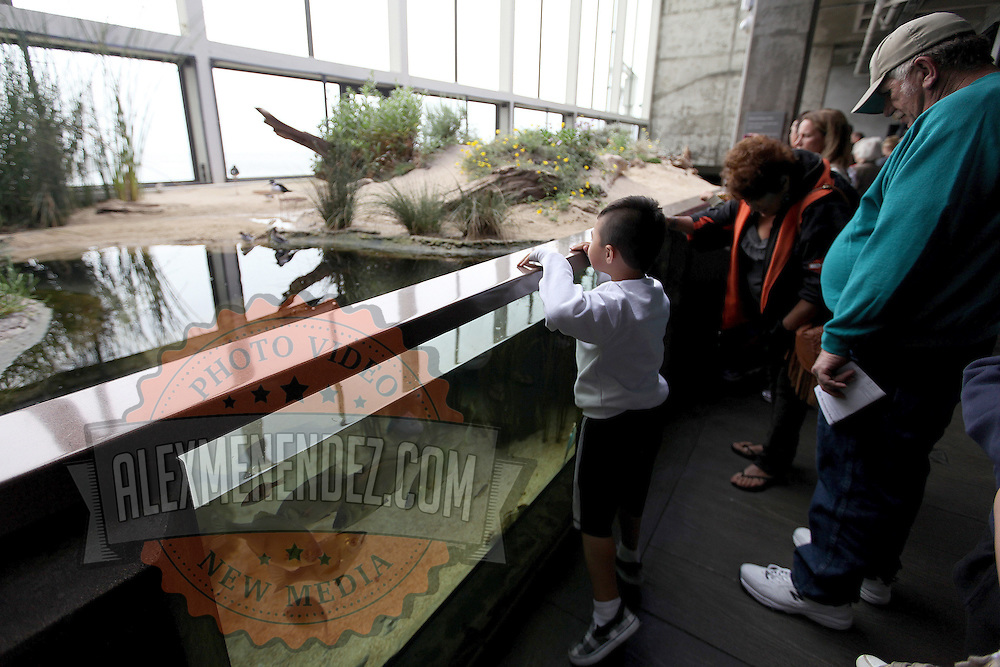 Visitors visit a wave exhibit at the Monterey Bay Aquarium, which is located on Cannery Row in Monterey, California, on Friday July 13, 2012.(AP Photo/Alex Menendez)