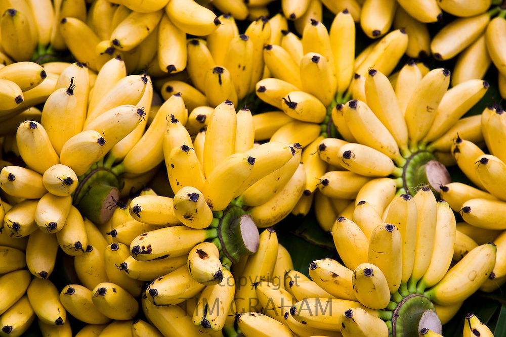 Bunches of bananas, Bangkok, Thailand