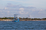 A shrimping boat works the waters along Morris Island with the Ravenel Bridge in Charleston, South Carolina in the background