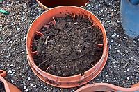 Worms for the Garden Tower. Image taken with a Leica CL camera and 23 mm f/2 lens