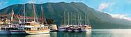 charter cruise boats in the harbour of Kor?ula town  [  Korcula ] Island Craotia Korčula town  ( Korcula] harbour  Craotia