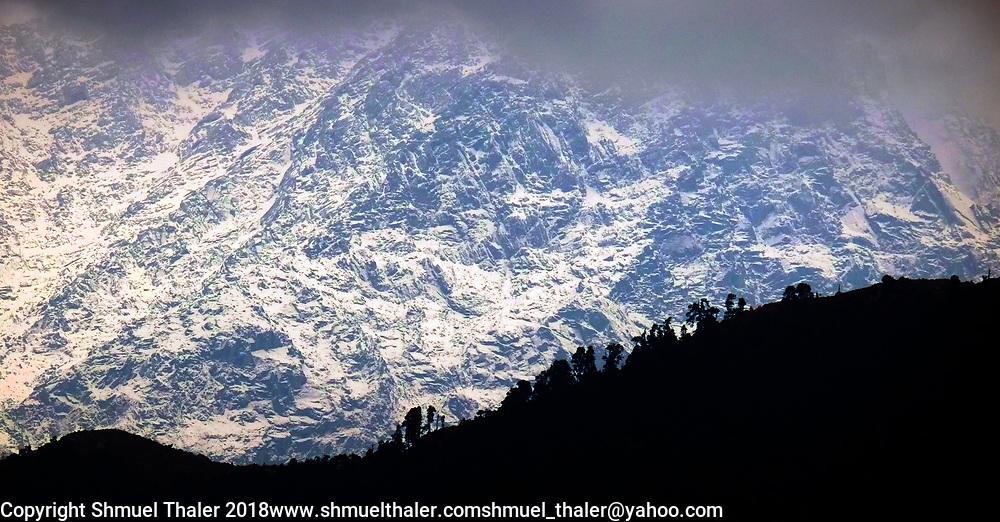 The Himalayas rise above Dharmshala in northern India.<br /> Photo by Shmuel Thaler <br /> shmuel_thaler@yahoo.com www.shmuelthaler.com